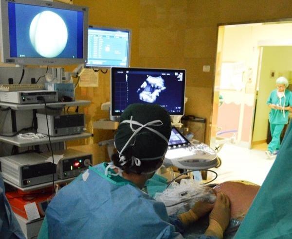 Centro di riferimento per le malformazioni congenite del rene e delle vie urinarie: prevenzione e cura del danno renale dal feto al bambino