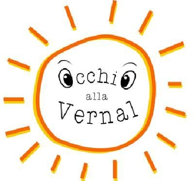 Associazione Occhio alla Vernal (VCK) (ONLUS)
