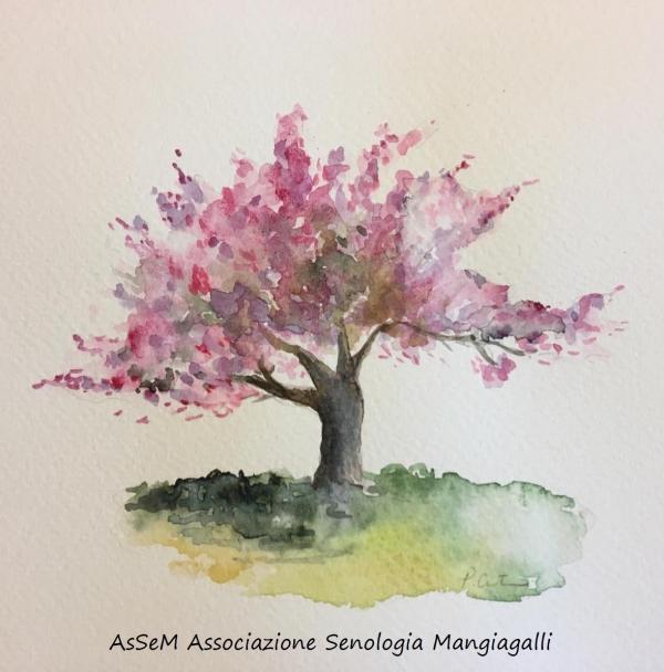 ASSEM - Associazione Senologica Mangiagalli